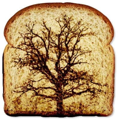 1000 Images About Bread Art On Pinterest Bread Art