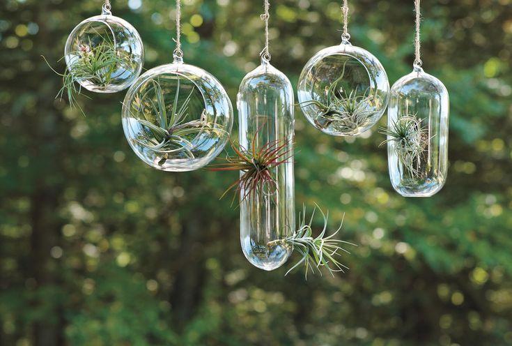 Sensational Party Beverage Dispenser Plastic Decorating Ideas Gallery in Spaces Contemporary design ideas