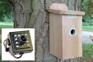 B&w discovery bird box system