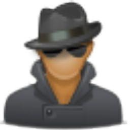 Comment masquer son adresse IP sur Mac ou Windows ?