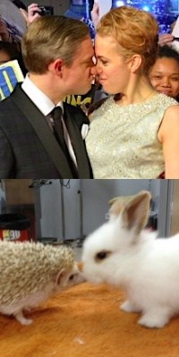 Amanda Abbington and Martin Freeman-Hedgehog Bunny comparison!!