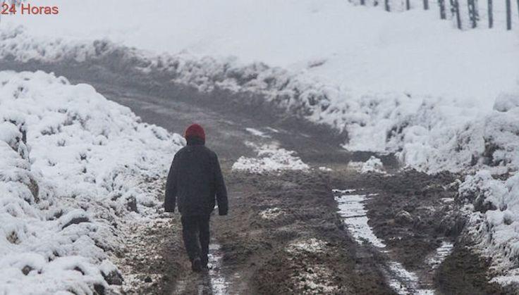 Se recupera parcialmente la conectividad en Alto Bío Bío tras intensa caída de nieve