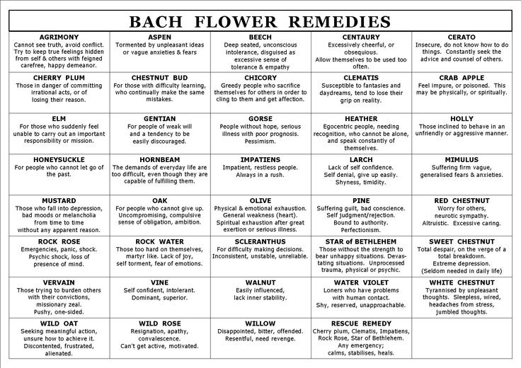 Bach Flower Essences Reference Guide | Pin by Chris C on My Favorite Things | Pinterest