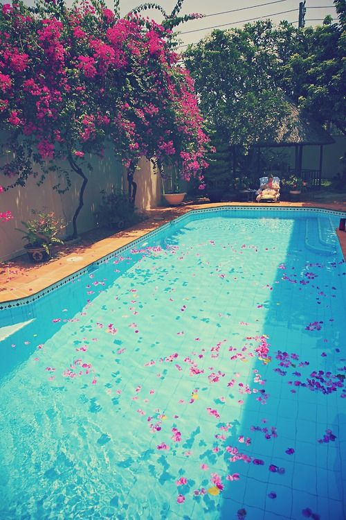 Found on cup of via tumblr other things for Swimming pool poker