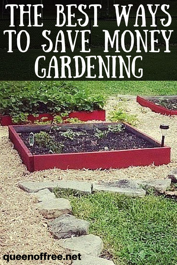 17 best ideas about love your family on pinterest inspirational family quotes quotes for - Money saving tips in gardening ...