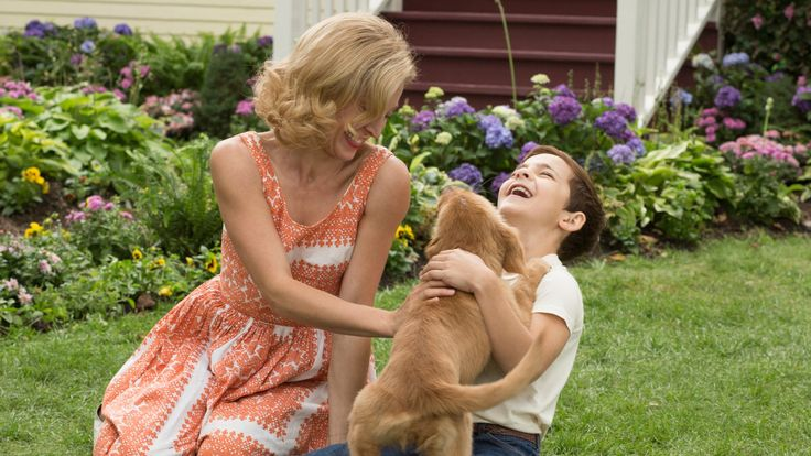 A Dog's Purpose Full Movie HD