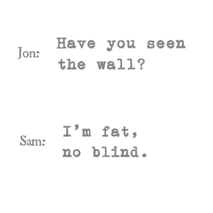 """ Você tem visto a parede?"" "" Eu sou gordo, nao cego."" #quotes #gameofthrones #jonsnow #samwelltraly #kitharrigton #johnbradley #nightswatch #wall #fat #blind #humor"
