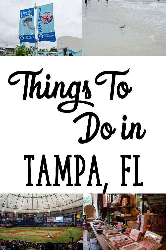 Things To Do in Tampa Florida for A Girls Weekend including ideas for where to hang out, some fun places to eat, and other ideas