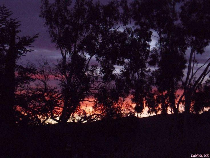 Cold Dawn, Kurow, New Zealand (by Larisa Nicholls)