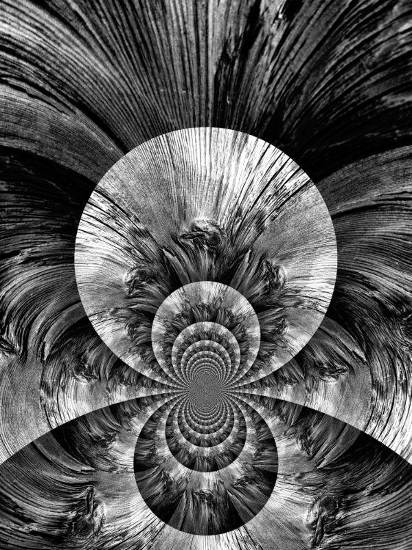 Lohijärven kylähistorian kuvakavalkaadi: Onko se paviaani, puu[n]silmä vai William Blake