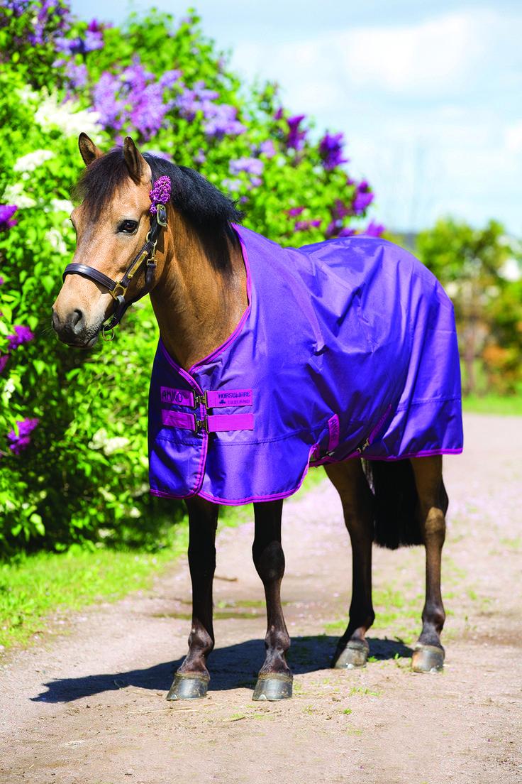 Amigo Pony Hero 6 Turnout Blanket Medium Weight