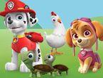 Dora's Carnival Adventure Activity Pack