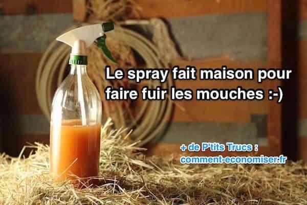 Grâce à ce spray maison, les mouches vont déguerpir en un rien de temps :-) Fini les mouches sur les animaux, les aliments et celles qui tournent autour de la table à l'extérieur !  Découvrez l'astuce ici : http://www.comment-economiser.fr/recette-spray-fait-maison-anti-mouches.html?utm_content=buffer0bf09&utm_medium=social&utm_source=pinterest.com&utm_campaign=buffer