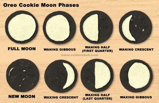 Oreo Moon PhasesHarvest Moon, Solar System, Science Lessons, Schools, Teaching Kids, Oreo Cookies, Oreo Moon, The Moon, Moon Phase