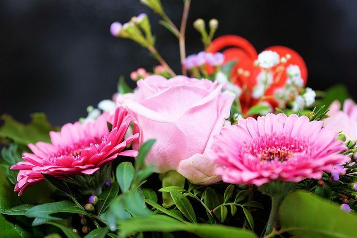 Jak dbać o cięte kwiaty ozdobne - Inspirowani Naturą | how to tace care for cut flowers
