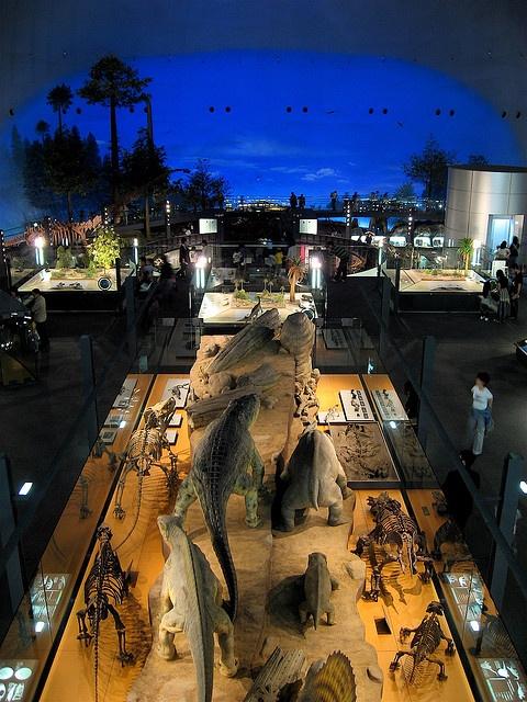 Fukui Prefectural Dinosaur Museum #fukui #japan