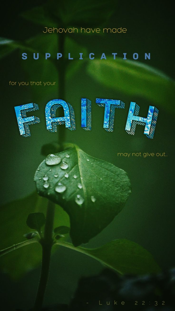 The need to keep our faith healthy can be likened to a plant's need for water. Unlike an artificial plant, a living plant keeps changing. A live plant either withers because of a lack of water or continues to thrive with a regular supply of moisture. If deprived of sufficient water, a once healthy plant will eventually die. So, too, our faith. It will wither and die if neglected. - From JW.org Daily Text 16 Feb 2018