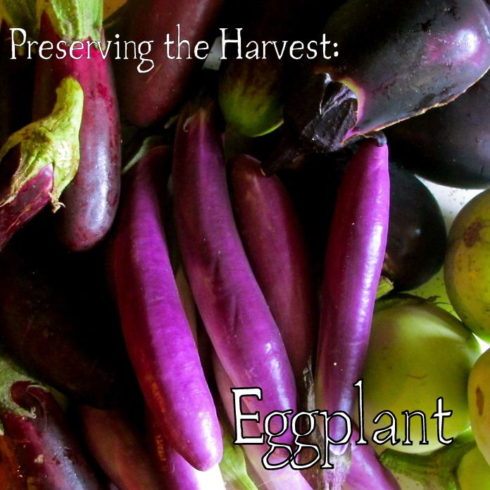 Due to its dense nature, it is not recommended that you can eggplant at home. So how do you preserve eggplant?