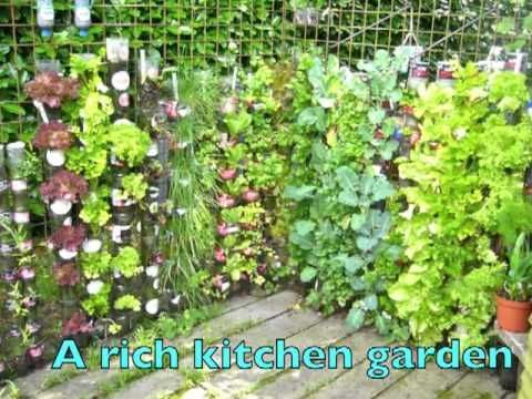 He Stacks Soda Bottles And Fills Them With Dirt. Just Wait Until You See His Garden 1 Year Later ...   facebook