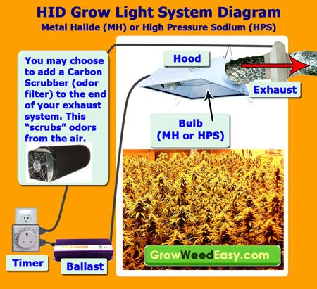 How to set up marijuana grow lights (picture diagram). View full article on setting up MH/HPS grow lights here: http://growweedeasy.com/hps-grow-lights-setup