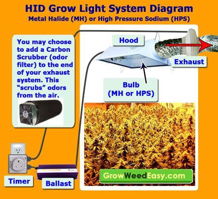 ec5521ed2ebdead397458559594b32b4 marijuana grow lights hps grow lights pin by growweedeasy com on grow lights grow lights, marijuana grow