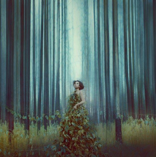 Photograph Untitled by Katerina Plotnikova on 500px