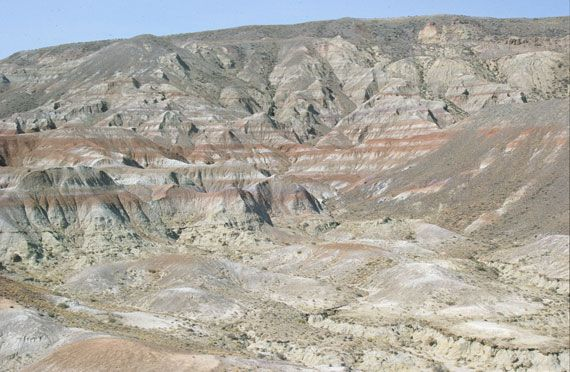 The Paleocene-Eocene ThermalMaximum, known as PETM (approximately 55.8 million yearsago), was a short-lived (~ 200,000 years)global warming event dueto a rapid rise in the concentration of gree…