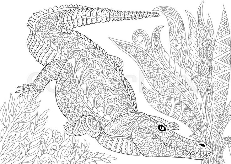 19++ Crocodile coloring pages for adults info