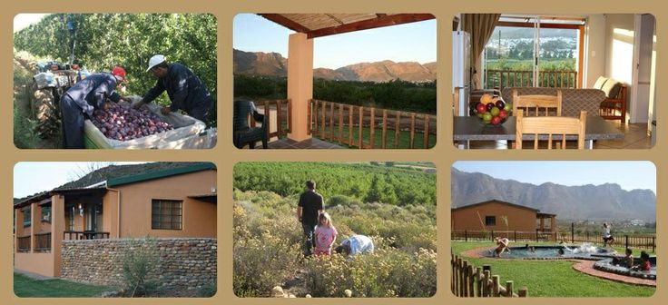 http://www.ledomainefarm.co.za a working fruit farm, great stay over weekend or passing back home.