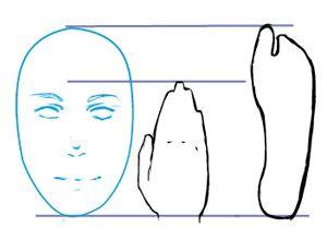 Proportionen menschlicher Körper
