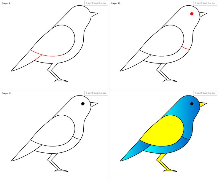 How to draw Bird for kids step by step drawing tutorial, draw Bird for kids step by step easy