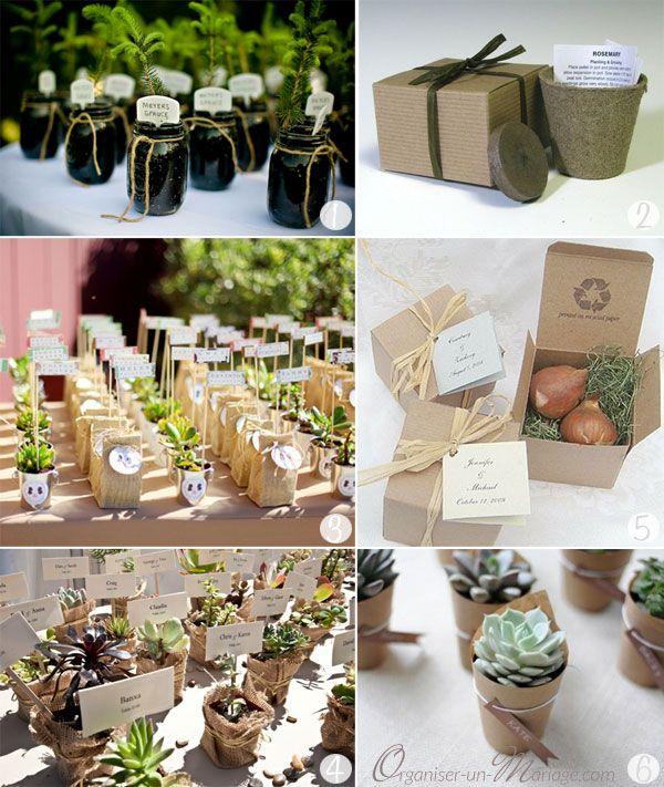 Cadeaux Invités DIY - Ecolo (graines à semer dans un petit pot de terre cuite, petite plante grasse...)