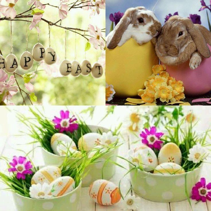 #paskalya #paskalyaorganizasyon #paskalyabayramı #yumurtaboyama #east #happyeast #kutludoğumhaftası #renkliyumurtalar #tavşan #ördek #organizasyon #kutlama