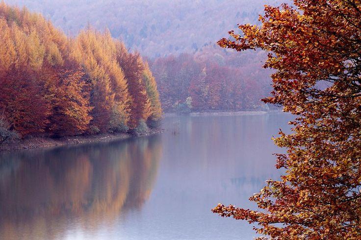 Con las hayas amarilleando, los abetos impasibles y las aguas turquesas del embalse de Irabia reflejando todo, el espectáculo de la Selva de Irati en otoño es inenarrable