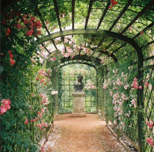 1000 Images About Garden Outdoor Living On Pinterest