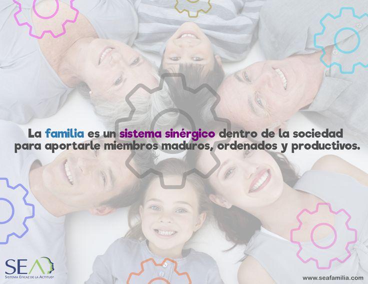 La familia es un sistema sinérgico dentro de la sociedad para aportarle miembros maduros, ordenados y productivos.