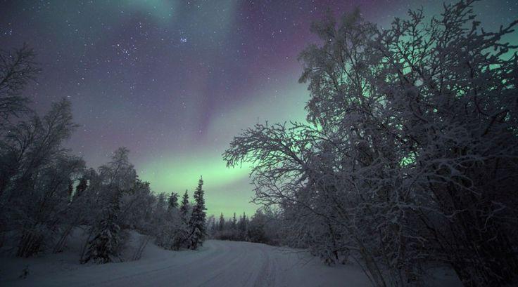 Auroras boreales desde los Territorios del Noroeste, Canadá | El Universo Hoy