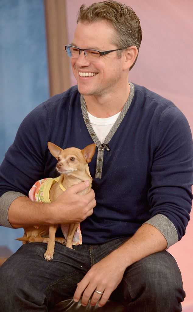 A bespectacled Matt Damon being all cute with a puppy. Adorbs! My dog has the same designer dress!!
