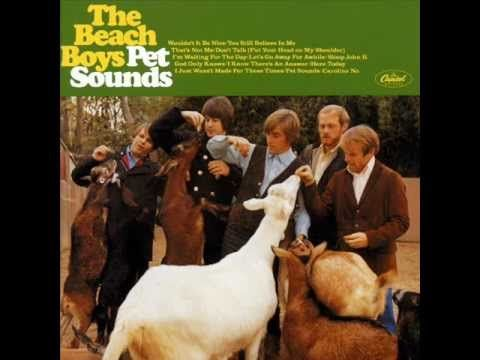 1966 - Caroline No - Beach Boys Pet Sounds LP - maybe my fav track off the LP...needed to make it longer (by today's standards) is my ONLY beef.  Least when Caroline No is played today, it's played longer. Timothy B. Schmit of the Eagles recorded a lovely cover of this. 'Tis a good one to look for on 'the Tube' and take a listen.