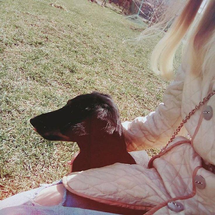 #dog #dogslife #puppygram #love #my #me #selfie #selfietime #goodmorning #morning #instagood #instamoment #time #walk #утро #доброеутро #селфи #собака #такса #гуляем #мы #счастье #happy #funny #follow #pets #life http://unirazzi.com/ipost/1510025946672685679/?code=BT0sJkZDGJv