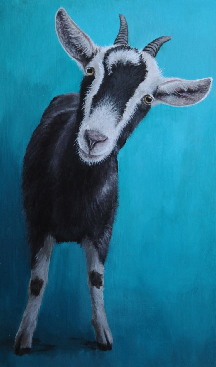acrylic on board florance the goat title: Can I come with you? By Becky Wilson