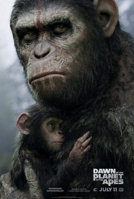 Planeta dos Macacos - O Confronto ganha primeiro comercial de TV e novo cartaz - Notícias de cinema - AdoroCinema