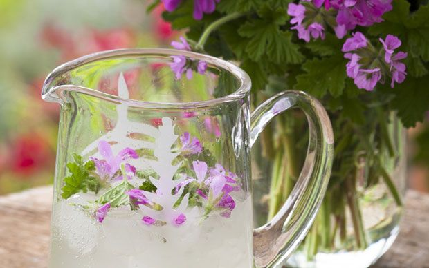Rose-geranium and lemon cordial recipe