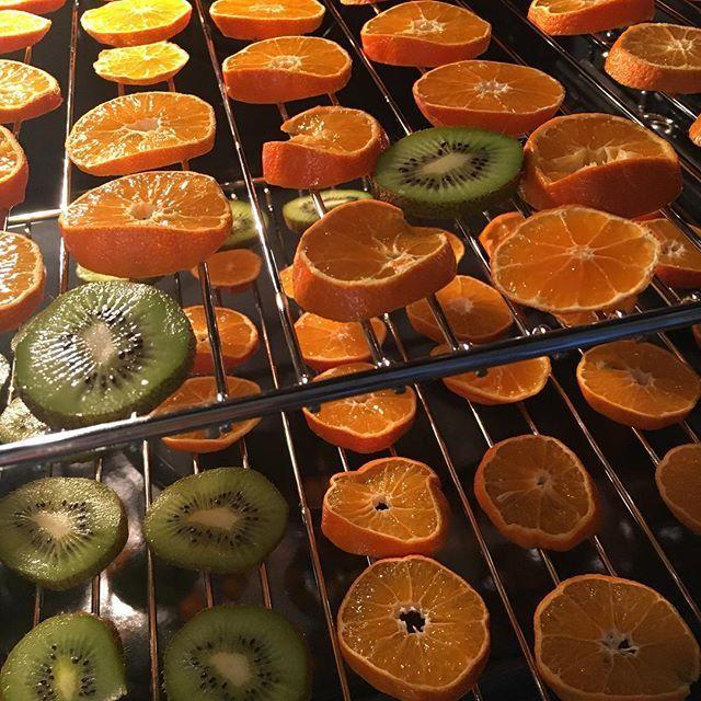Encore un essai .... I try  Des clémentines et des kiwis un peu passés , mon nouveau four @ikeafrance #kulinarisk , depuis ce matin à 80•c ....et j'espère bientôt des agrumes séchés pour le thé, la déco, l'odeur (ça embaume déjà la cuisine ) Bonne fin d'après-midi  #ikea #IKEAHome #ikealille #cooking #cuisine #deshydratation #agrumes #orange #clementine #kiwi#test #pinterstinspired #smellsgood #the #tea #ikeafamilylive #goodevenig #bonnesoirée #itry