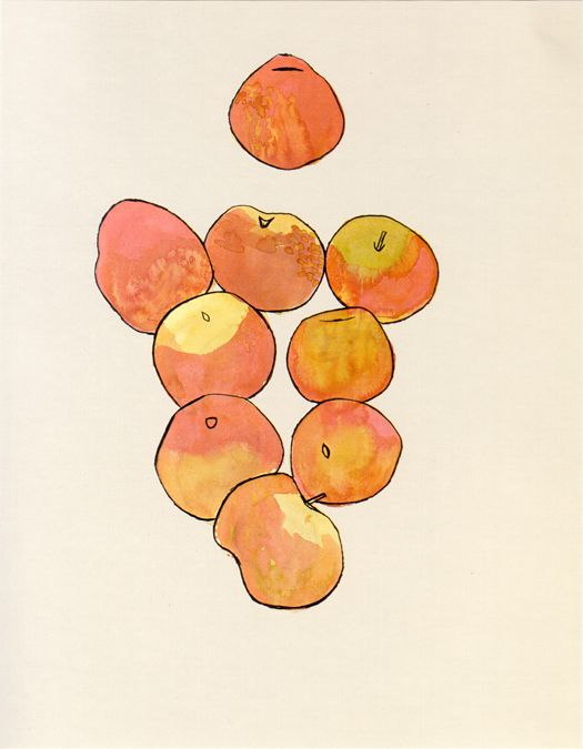 Ellsworth Kelly (American, b. 1923), Apples, 1949  Watercolor and pencil on paper, 24 ¾ x 19 3/8 inches  Collection of the artist. © Ellsworth Kelly