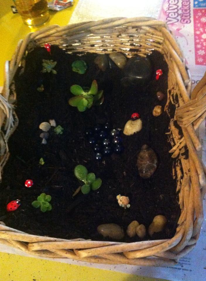 Fairy Garden in a basket :)