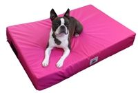 Snugglezzz supplying you the best pet products at excellent prices.