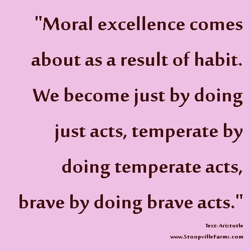 """Moral excellence comes about as a result of habit."" Aristotle #quotes #spirituality"