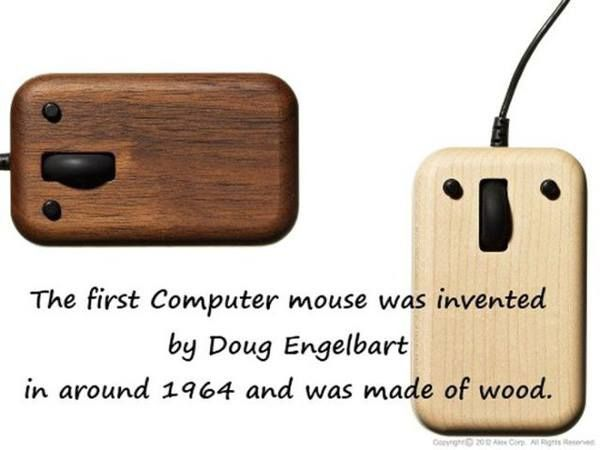 The great-grandfather of that sleek mouse you had at home! Respect please 👊👏