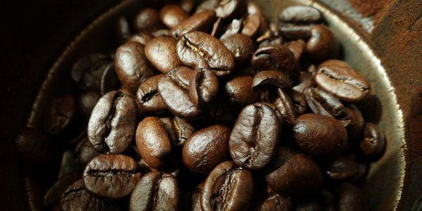 El enema de café y la quimioterapia